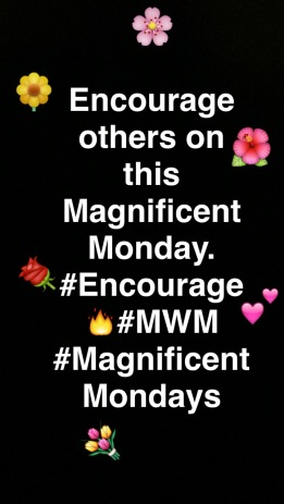 magnifentmonday